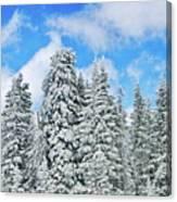 Winterscape Canvas Print
