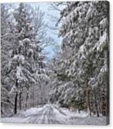 Wintery Country Road Canvas Print
