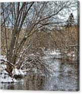 Wintery River Canvas Print