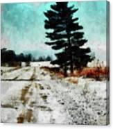 Wintry Altona Road Canvas Print