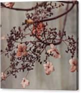 Wintry Elegance Canvas Print
