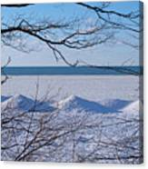 Wintry Lakeshore Canvas Print