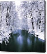 Wintry White Canvas Print