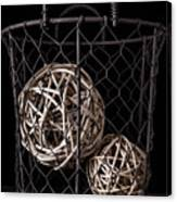 Wire Basket And Balls Still Life Canvas Print