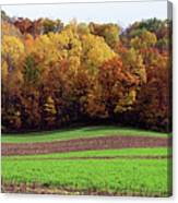 Wisconsin Colors Canvas Print