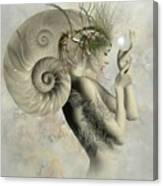 Wish On A Pearl Canvas Print