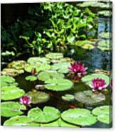 Wishes Among The Water Lilies Canvas Print