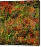 Wisps Of Autumn Canvas Print