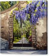 Wisteria Gate Canvas Print