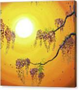 Wisteria In Golden Glow Canvas Print