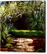 Wisteria Shadows Canvas Print