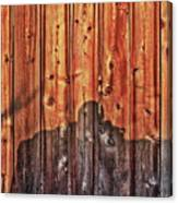 Within A Wooden Fence Canvas Print