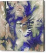 Wizard's Dream Canvas Print