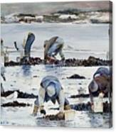 Wnter Clam Diggers Canvas Print