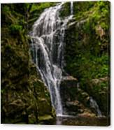 Wodospad Kamienczyka Canvas Print