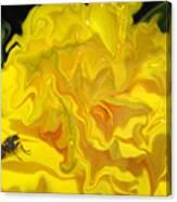 Wohlfahrtia And Begonia Canvas Print