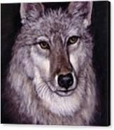 Wolf Buddy Canvas Print