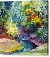 Wolf Pen Creek Canvas Print