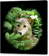 Wolf Thick Of The Woods Canvas Print