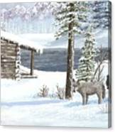Wolfs In Winter Canvas Print