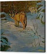 Wolves Of Maine Canvas Print