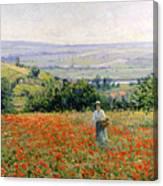 Woman In A Poppy Field Canvas Print