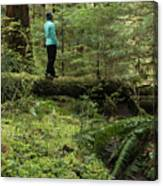 Woman On A Moss Covered Log In Olympic National Park Canvas Print
