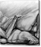 Woman Resting Canvas Print