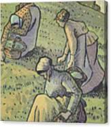 Women Gathering Mushrooms Canvas Print