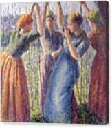 Women Planting Peasticks Canvas Print