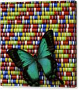 Wonderful Green Butterfly Canvas Print
