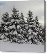 Wonderful Winter Canvas Print