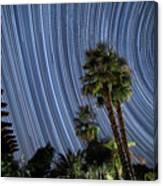 Wonky Star Trails Canvas Print