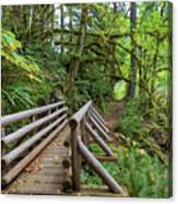 Wood Bridge Over Butte Creek Canvas Print