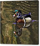 Wood Duck Autumn Reflections Canvas Print