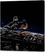 Wood Duck Pair - Fractal Canvas Print