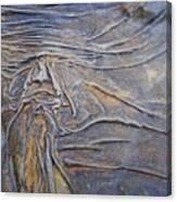 Wood Face  Canvas Print