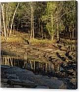 Wooded Backwash Canvas Print
