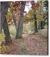 Wooded Entrance Canvas Print