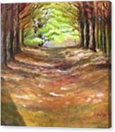 Wooded Sanctuary Canvas Print