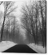 Wooded Winter Road Canvas Print