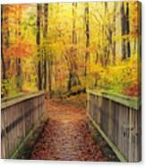 Wooden Bridge   Hdr Canvas Print