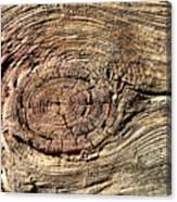 Wooden Eye 1 Canvas Print