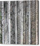 Wooden Fence And Ivy Canvas Print