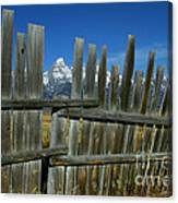 Wooden Fence, Grand Tetons Canvas Print