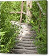 Wooden Stairs Canvas Print