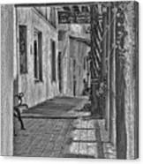 Wooden Walkway Canvas Print