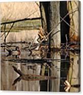 Woodies Canvas Print