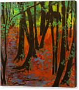 Woodland At Watkins Glen New York Canvas Print