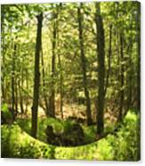 Woodland Bubble Canvas Print